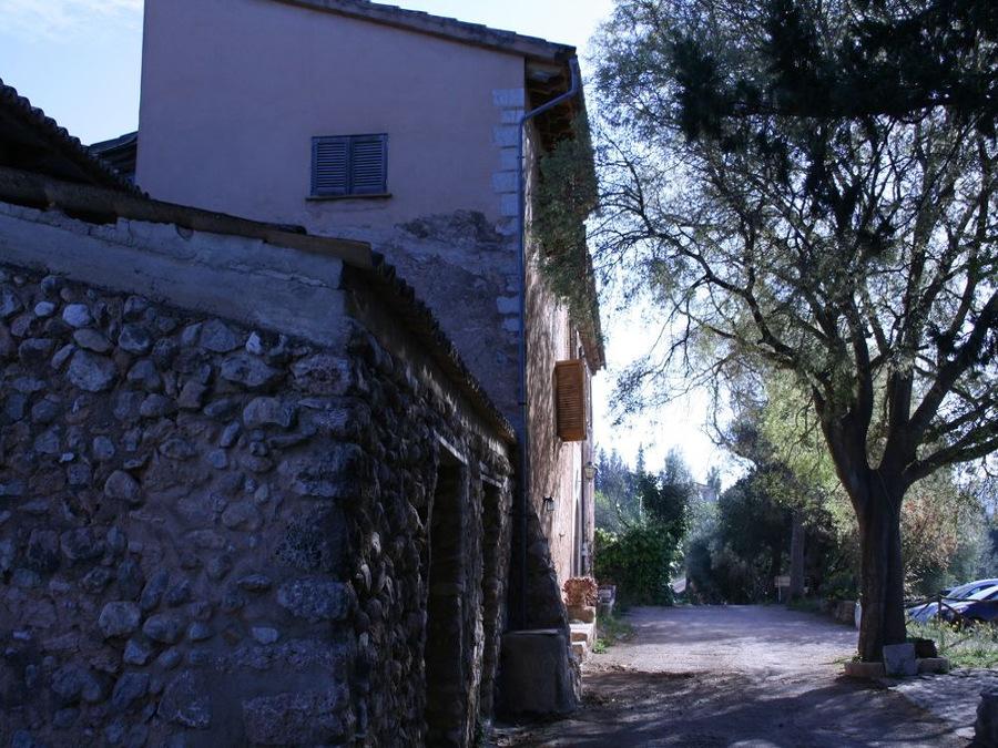 Binicanella