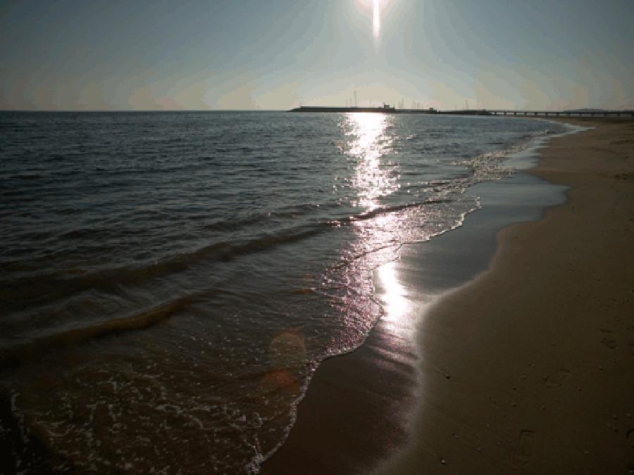 A la platja!