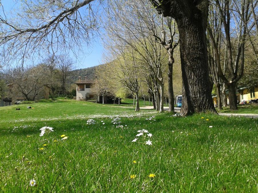 Casa de colònies El Rourell, Puigpardines (La Garrotxa)