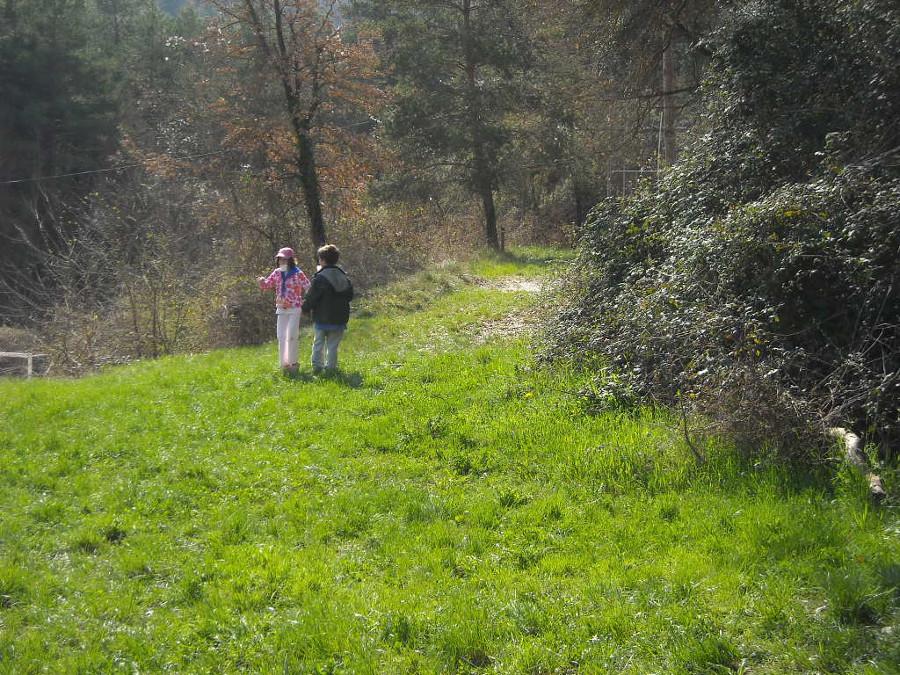 Bosc de Contes