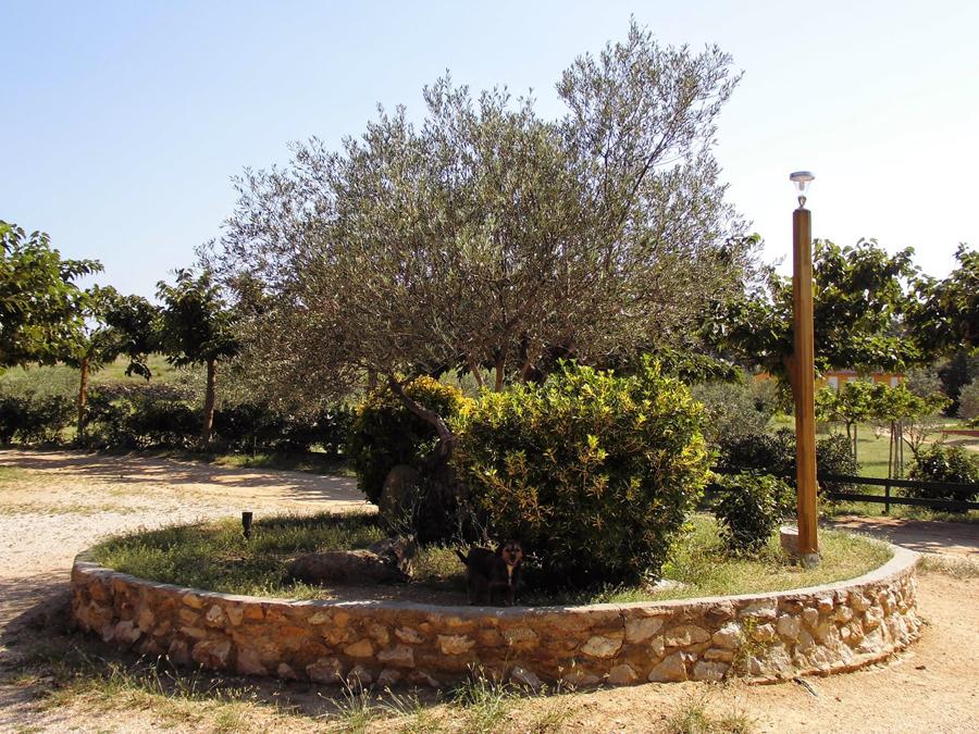 Els Estanys, Capmany (Alt Empordà)