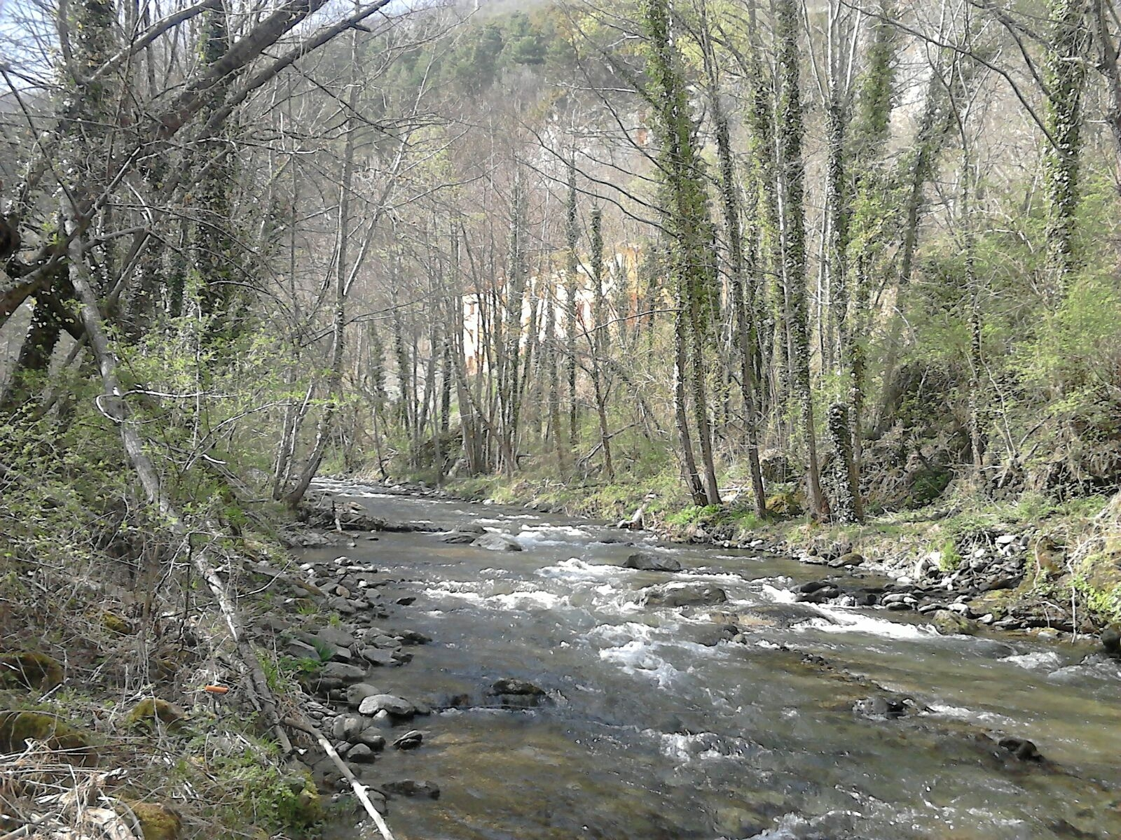 Alberg Roques Blanques, Ribes de Freser. Vall de Núria