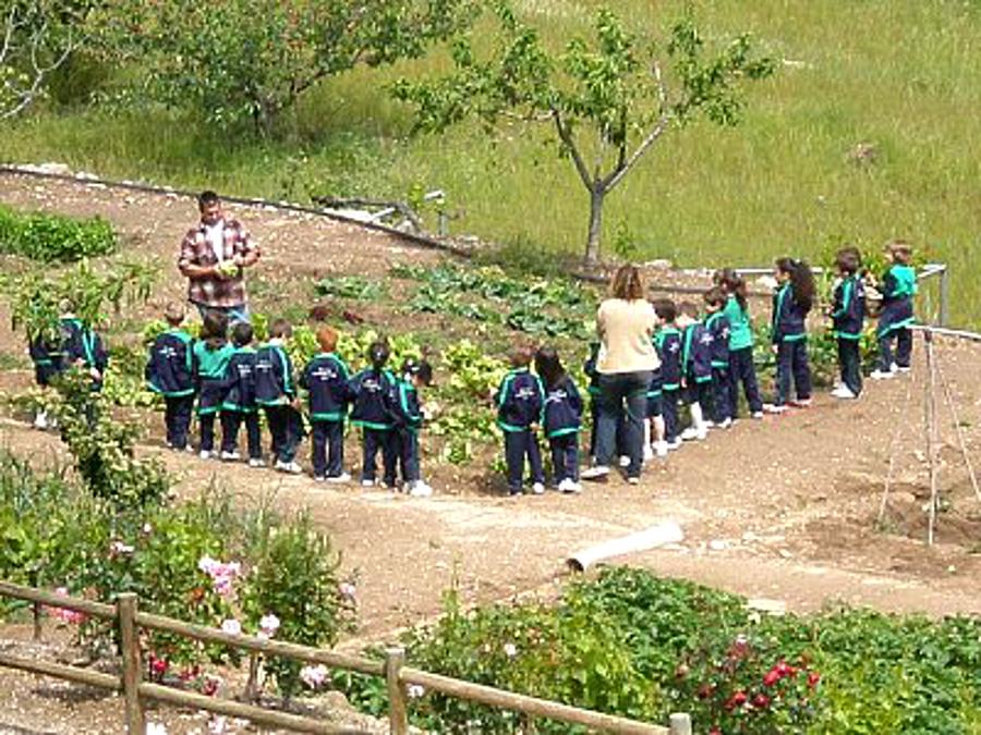 Mas Baget, Granja Escola situada al Baix Camp